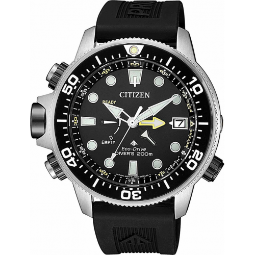 Citizen Postmaster Aqualand BN2038-01L